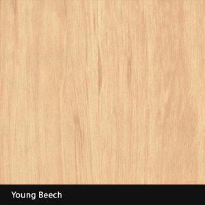 Young Beech